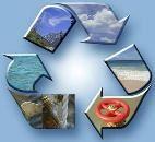 MOD environmental assurance